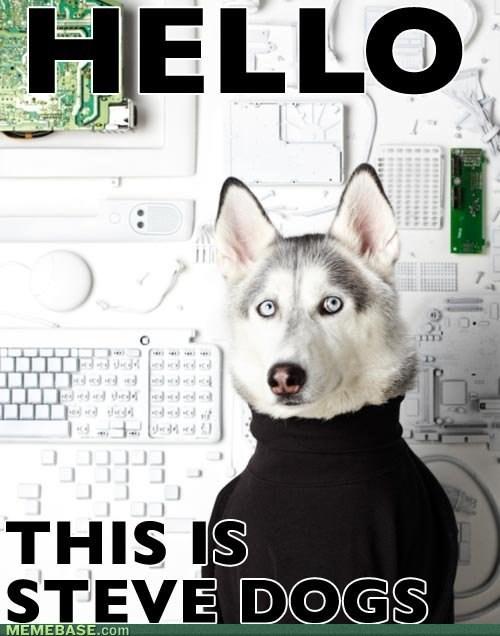 yes dog meme - photo #6